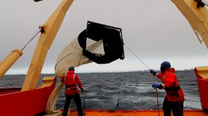 Debbie Steinberg deploys net off stern of research vessel Gould